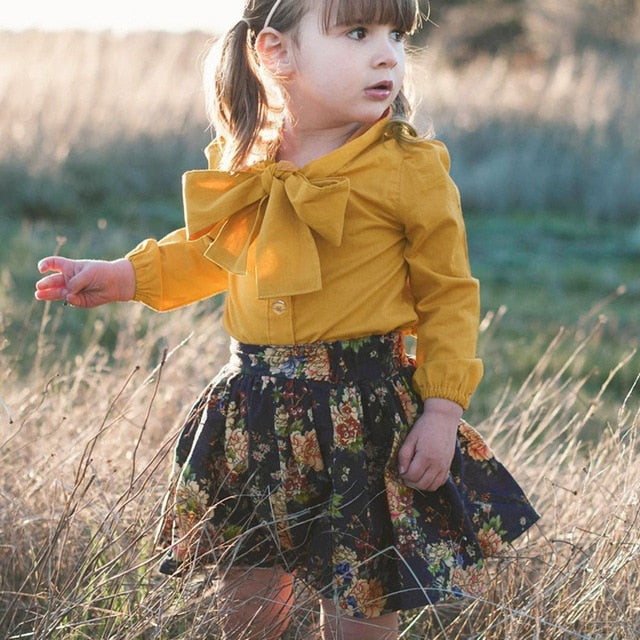 Toddler Girls Long Sleeve and Skirt Outfit