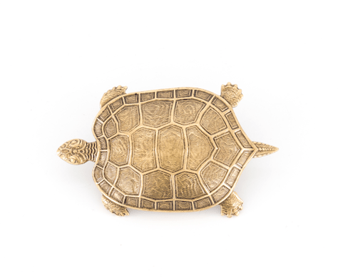 Broche Tortue Dorée Evesome - Evesome Golden Turtle Brooch