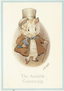 The Amiable Guinea-Pig Post Cards