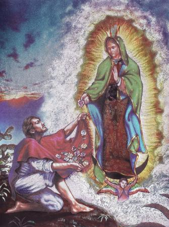 Virgin of Guadaloupe. Post Cards