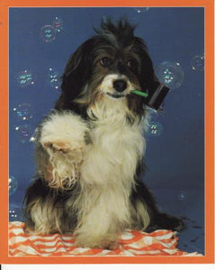 Blowing Bubbles Photo Poster