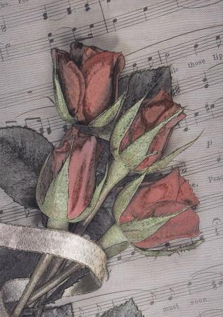 Roses on Sheet Music Post Cards