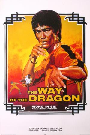 The Way Of The Dragon Posters