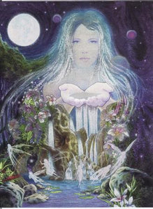DUFEX Wishing Card. The enchanted Lake with Fairies. Wish Cards