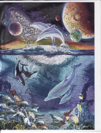 DUFEX Wishing Card. Esoteric. Dolphins and Orca's Wish Cards