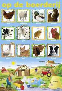 Laminated. Schoolposter. Chicken, Sheep, Duck, Horse,  Cow, Goat, Goose, Cat, Ox, Dog,  Cock, Chick. Posters