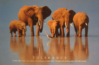 Elephants. To have Others respect your Opinion, it is necessary to respect theirs. Through such Tolerance comes true Understanding. Posters
