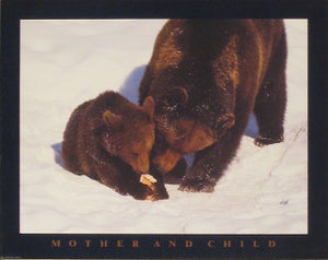 Brown Bear - Mother and Child Posters