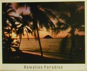 Hawaii Paradise Posters