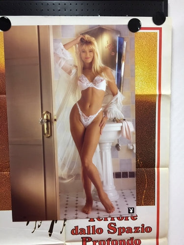 Playboy Sexy Girl of 1991.  Erotic Poster