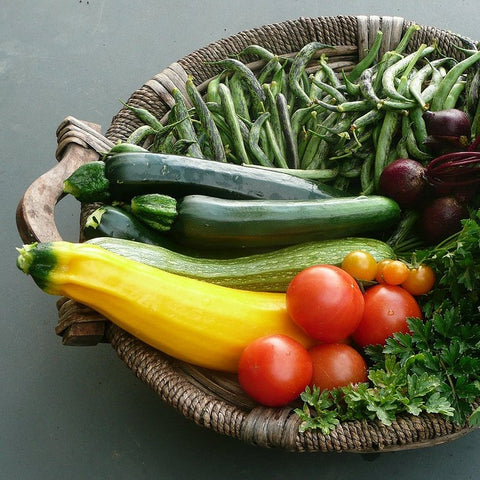 Vegetables from Riverweb Farm in Phillips & Avon, Maine