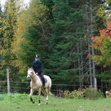 SADDLEVIEW FARM Horseback Trail Rides & Lessons