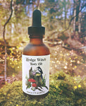 Hedge Witch Body Oil
