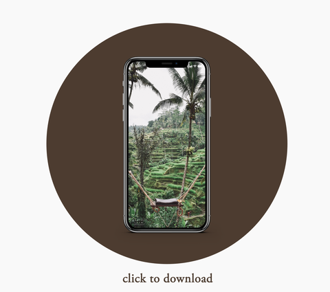 Palm Brown iPhone Wallpaper Download