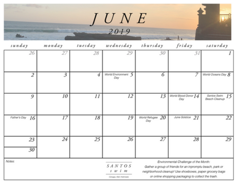 June Santos Swim Calendar Download Printable