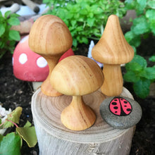 Load image into Gallery viewer, Wooden Mushrooms Set of 3