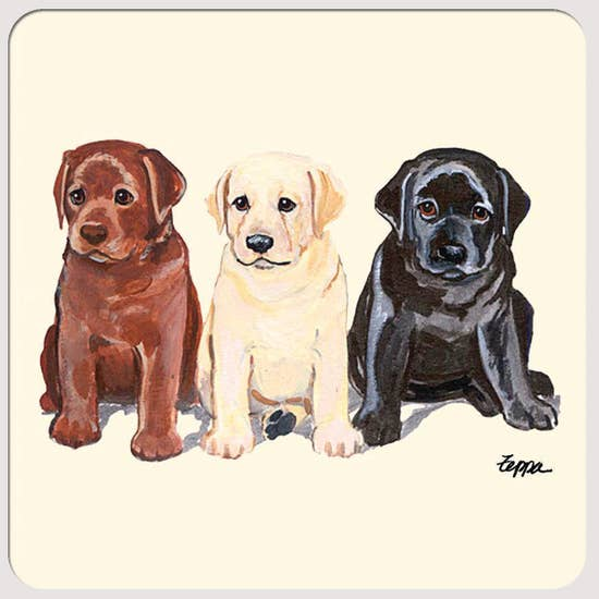 Labrador Puppy Beverage Coasters - Horse Country Trading Company