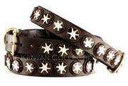 """Batik Bone Star"" Beaded Dog Collar - Horse Country Trading Company"