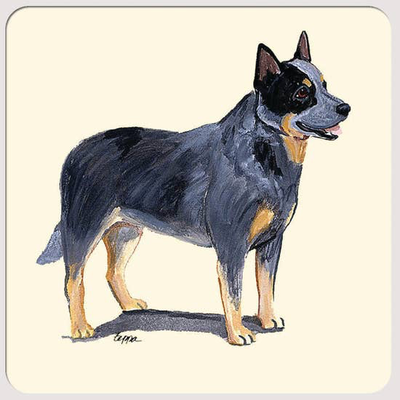Australian Cattle Dog Beverage Coasters - Horse Country Trading Company