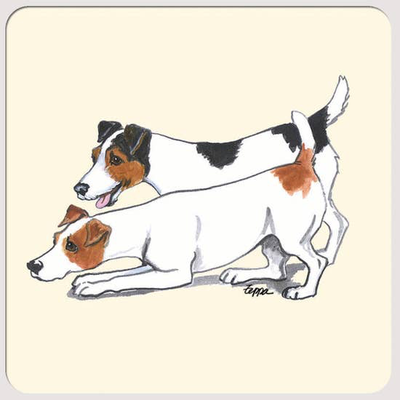 Jack Russell Terrier Pair Beverage Coasters - Horse Country Trading Company