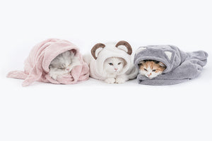 Animal hood towel . cat