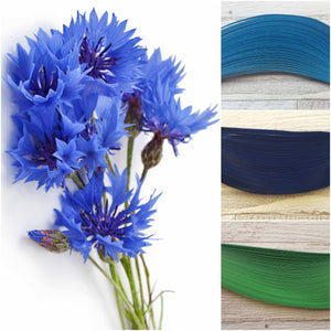 Quill in the colours that inspire you!