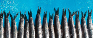 Eating fish may not be enough to get your daily dose of omega-3s