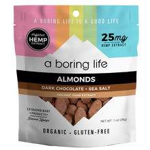 Load image into Gallery viewer, Dark Chocolate + Sea Salt Roasted Almonds | 25 MG