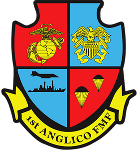 1st ANGLICO Patch