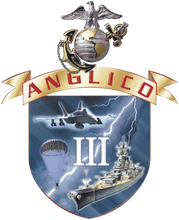 3D ANGLICO Patch