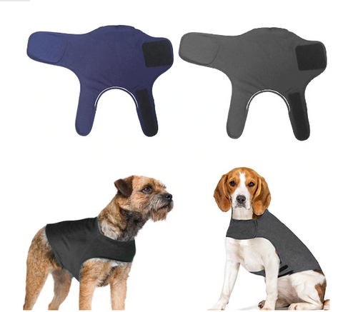 different-dog-models-with-anti-anxiety-jacket