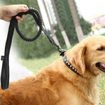 Best Shockproof Reflective Bungee Dog Leash with Free Clicker 2019 - Ruby Doo Stress Remedies