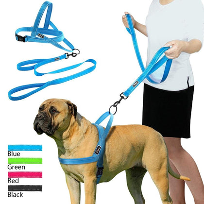 No Pull Reflective Dog Harness and Matching Two-Handle Leash
