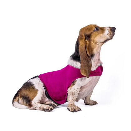 Anti-Anxiety Jacket for Dogs 2019 -Soft, Breathable & Calming Clothing
