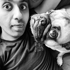 Sumear and the Pug