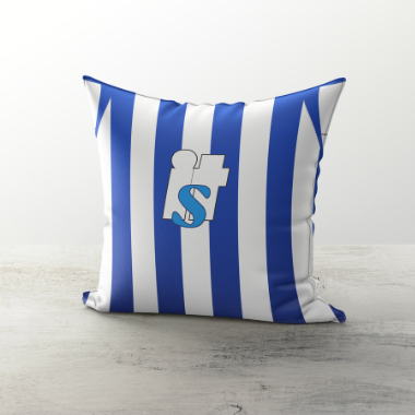 Brighton & Hove Albion 2008 Home Cushion - TheRetroHut