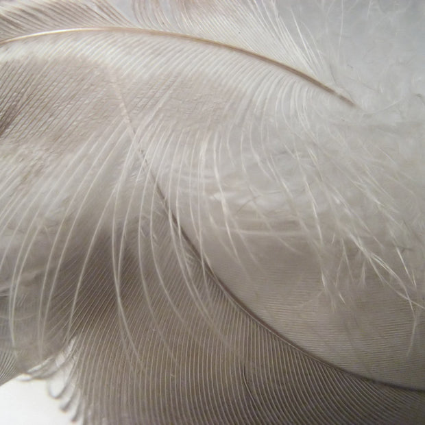 Trige pillow in white, 80% goose feathers & 20% goose down & 100% cotton |Find the perfect pillows