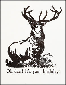Oh dear! It's your birthday!