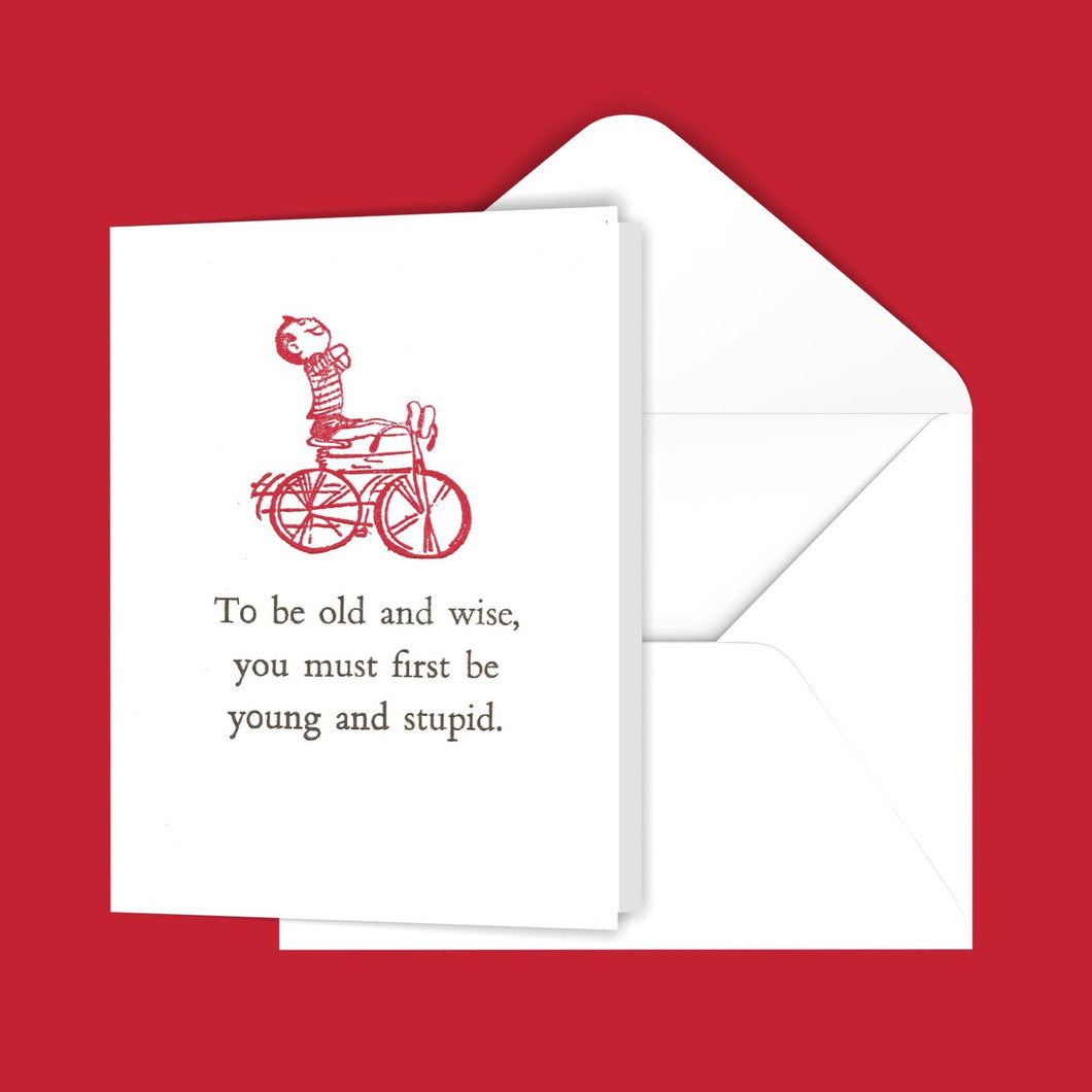 To be old and wise... Greeting Card