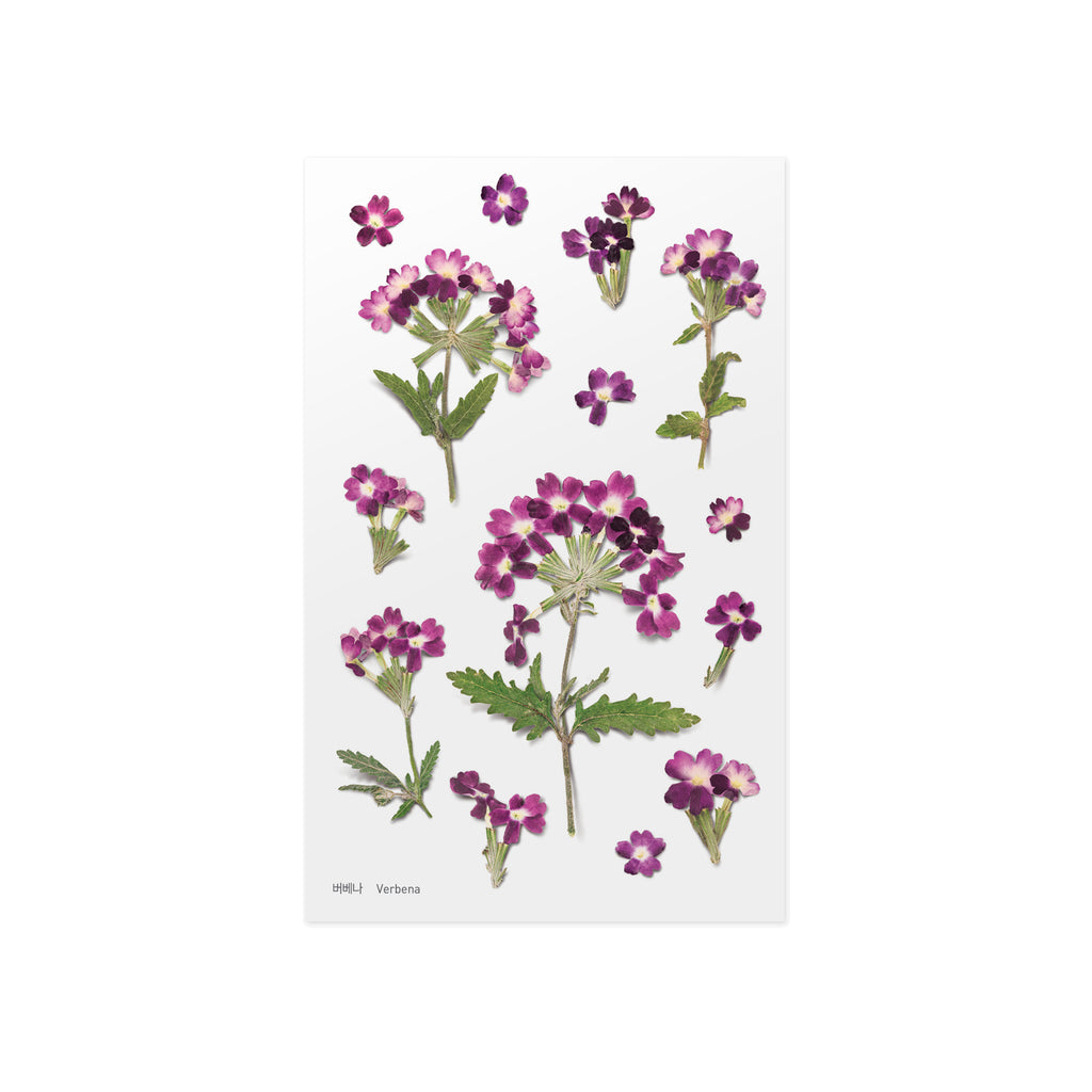 Pressed Flower Stickers - Verbena - Have a Point