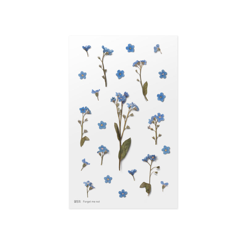 Pressed Flower Stickers - Forget Me Not - Paper Kooka
