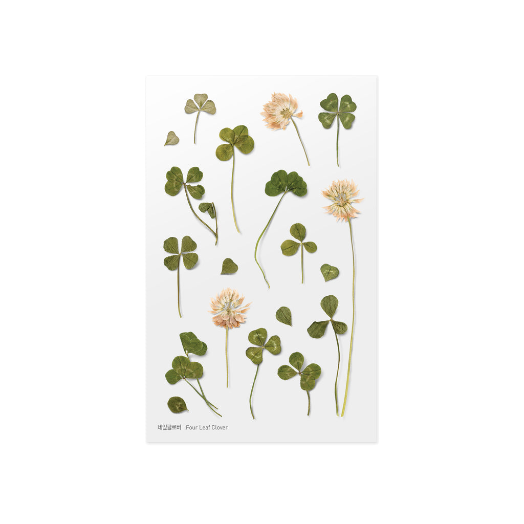 Pressed Flower Stickers - Four Leaf Clover - Paper Kooka