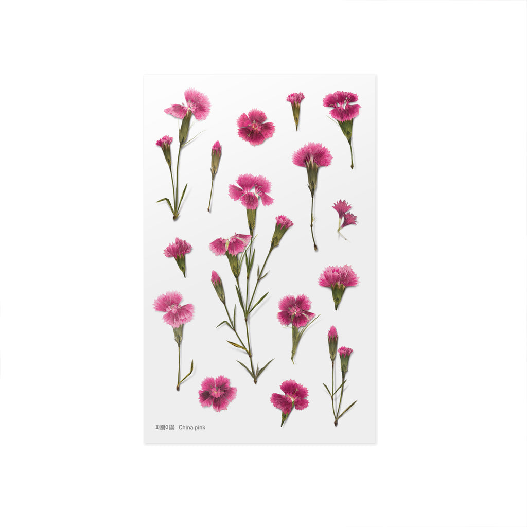 Pressed Flower Stickers - China Pink - Paper Kooka
