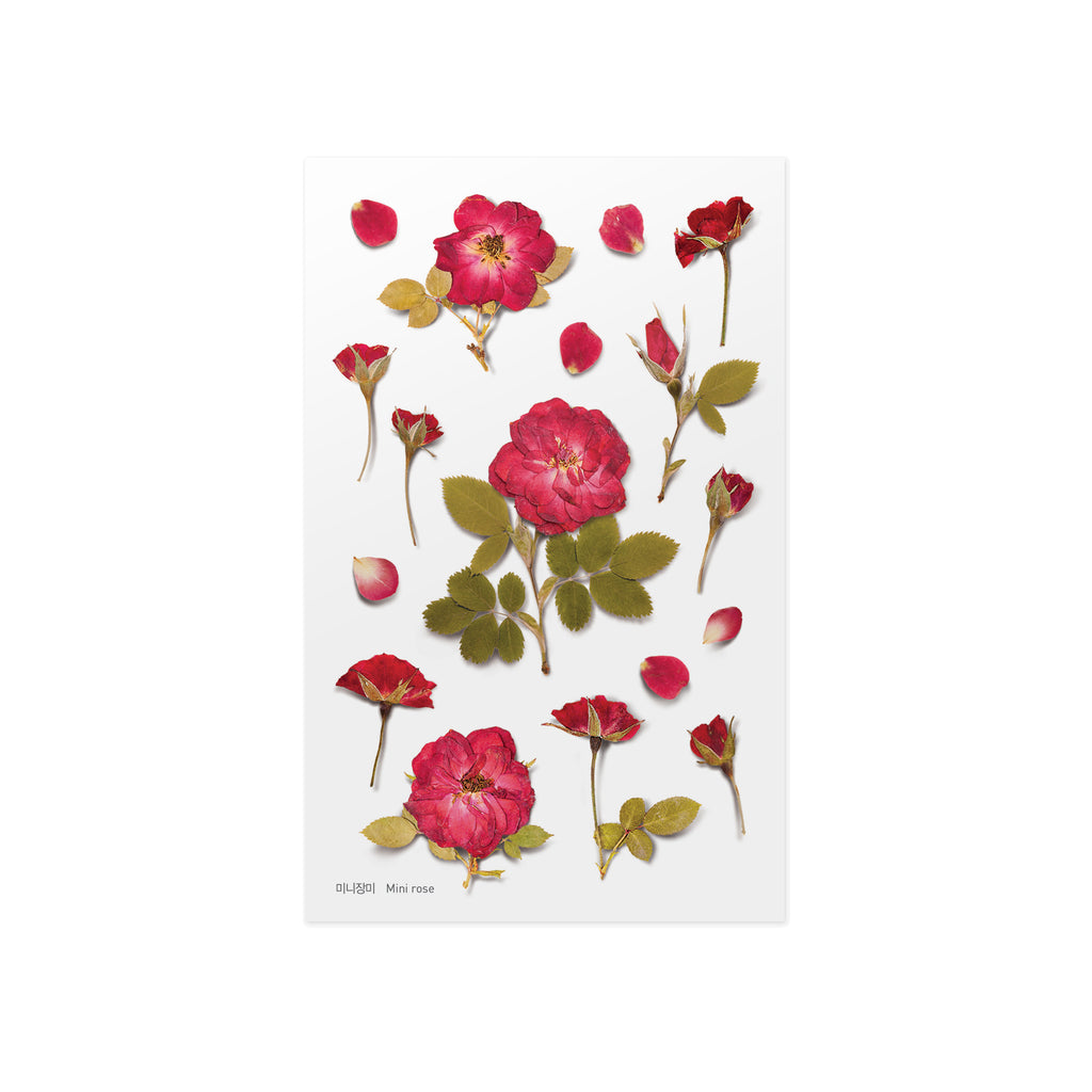 Pressed Flower Stickers - Mini Rose - Paper Kooka
