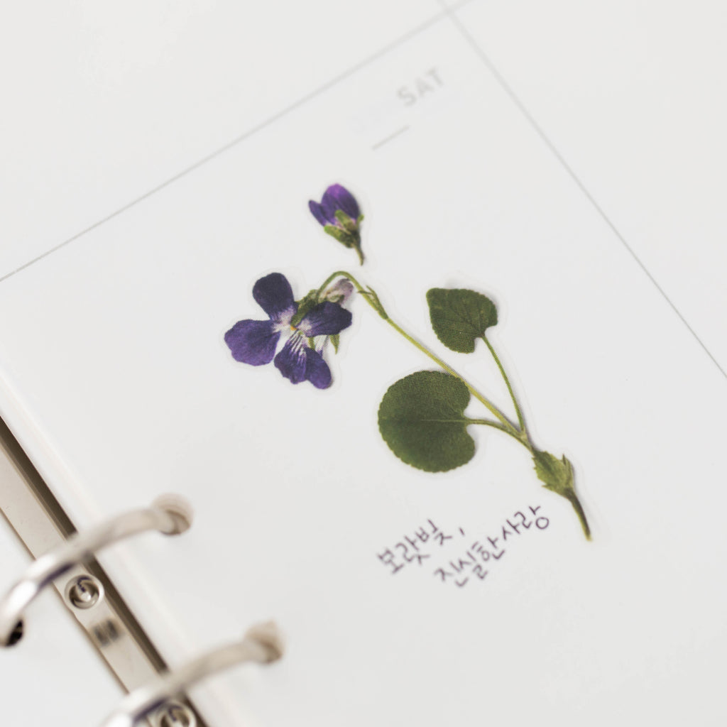 Pressed Flower Stickers - Manchurian Violet - Have a Point