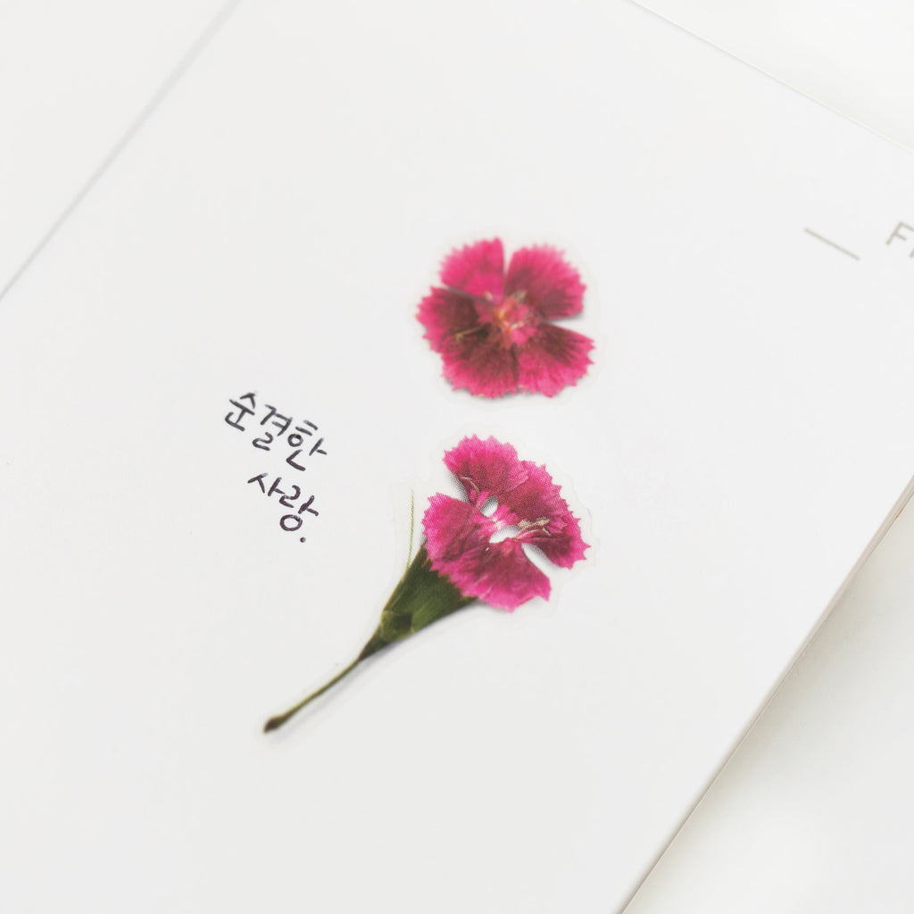 Pressed Flower Stickers - China Pink - Have a Point