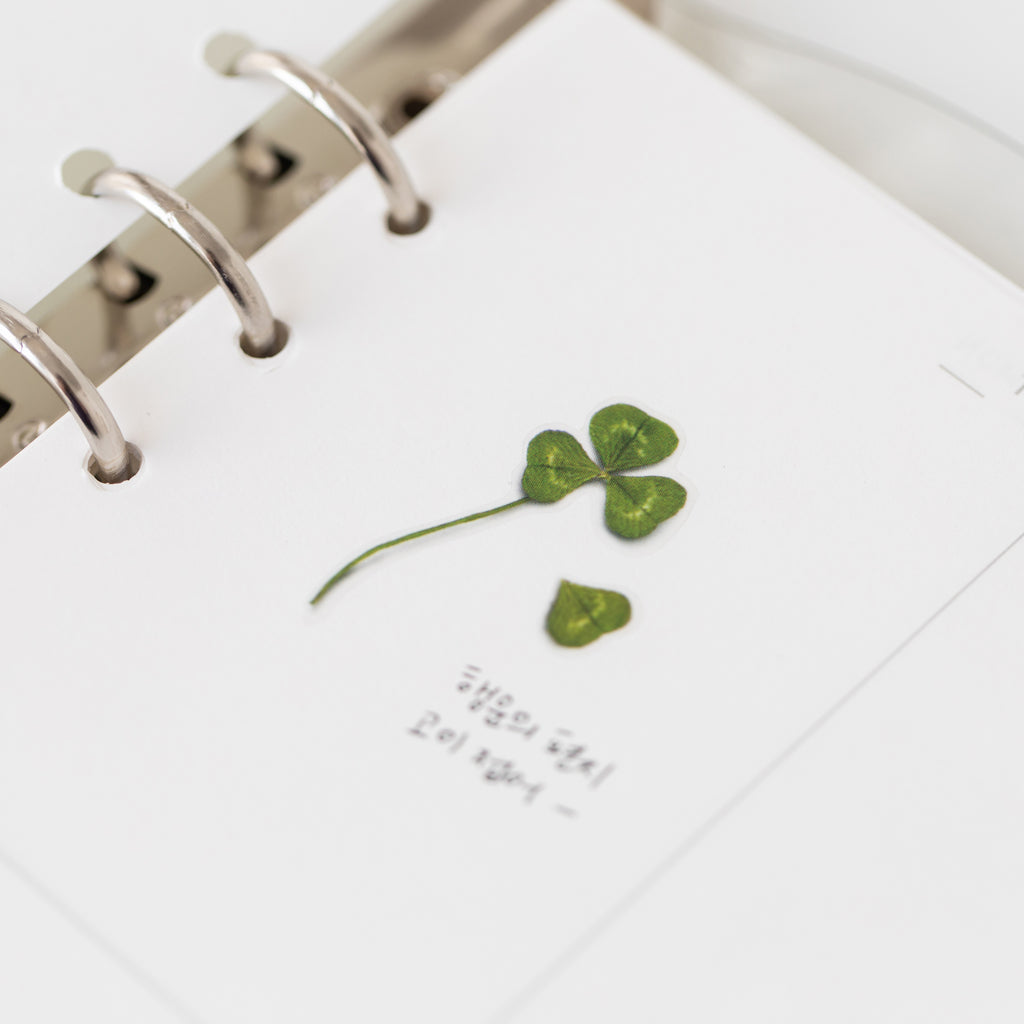 Pressed Flower Stickers - Four Leaf Clover - Have a Point