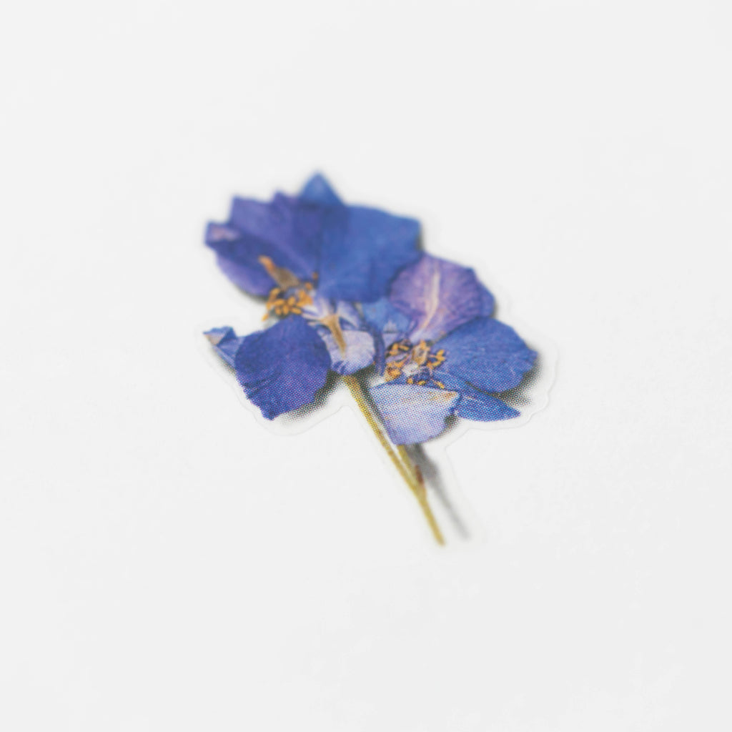 Pressed Flower Stickers - Larkspur - Have a Point