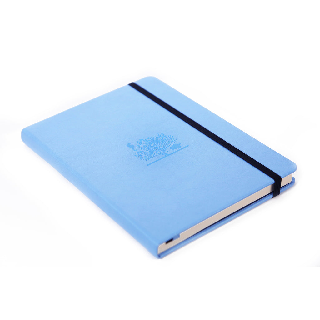 EARTH - Sky Blue Great Barrier Reef - dotted & numbered A5+ journal - Dingbats* - Have a Point