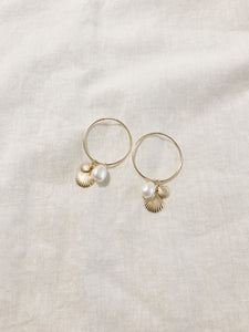 Shell Drop Hoops